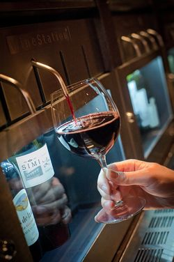 Scary Facts About Wine Waste and Deathly Pitfalls to Avoid